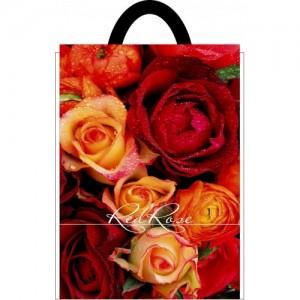 Пакет петля 25*30 Красные Розы