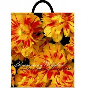 Пакет петля 40*42 Желтые цветы