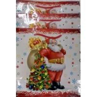 Подарочный пакет 23х22,5х10 Дед Мороз
