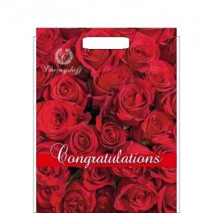 Пакет с прорезной ручкой 290*370 Красные Розы