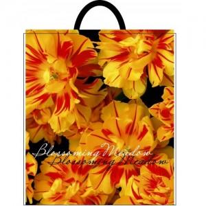 Пакет с пластиковой ручкой 40*48 Жёлтые цветы